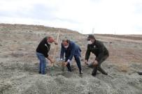 'Geleceğe Nefes' İçin Fidanlar Toprakla Buluşturuldu