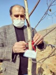 MHP Yahyalı İlçe Teşkilatından Ağaçlandırmaya Destek