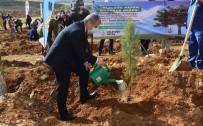 Milli Ağaçlandırma Gününde Fidanlar Toprakla Buluşturuldu