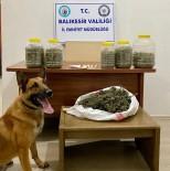 Narkotik Köpeği Nmak'tan Uyuşturucuya Bingo
