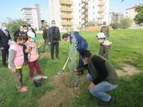 Burhaniye'de Öğrenciler Ağaç Dikti