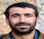 Etkisiz Hale Getirilen 3 Teröristten 1'İ 10 Milyon TL Ödüllü Listeden Çıktı