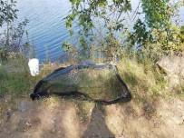Kaçak Balık Avcıları Cezadan Kurtulamadı
