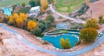 Mazıdağı'nda Sonbahar Renkleri Görenleri Hayran Bıraktı
