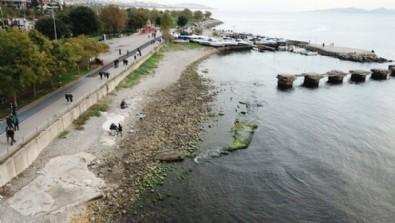 Kadıköy Caddebostan'da deniz çekildi, tedirginlik yaşandı