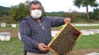 (Özel) Hobi Amaçlı Başladığı Arıcılıkla Korona Virüse Savaş Açtı