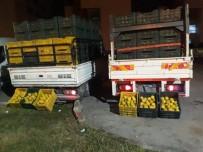 Bahçeden 10 Ton Portakal Çaldılar