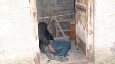 Alkollü Şahıs Girdiği Kümeste Sızıp Kaldı