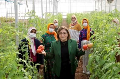 Gaziantep'te Şifa Paketi İle Halka Sağlık, Esnafa Destek Sağlanacak