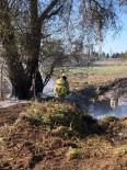 Burhaniye'de Ot Yangınında Kavak Ağaçları Zarar Gördü