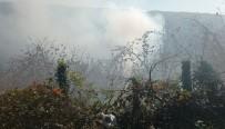 Fındıklık Yangını Kısa Sürede Söndürüldü