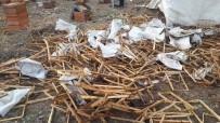 Ayılar 50 Kovanı Parçaladı, 100 Kilo Balı Yedi