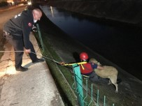 Dereye Düşen Köpeği İtfaiye Ekipleri Çıkarttı