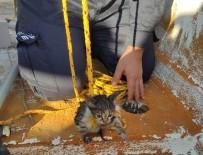Edremit'te Gidere Düşen Kediyi İtfaiye Ekipleri Özel Uğraşla Çıkardı