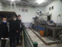 Zeytinyağı Fabrikalarında Korona Denetimi