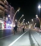Kısıtlamada Sokaklar Atlara Kaldı