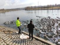 Polis Ekipleri Kızılırmak'ta Bulunan Kaz Ve Ördekleri Besledi