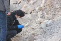 Yıkılmış Metruk Evin Hafriyat Temizliği Sırasında İnsan Kafatası Bulundu