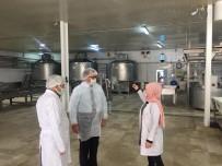 Altıntaş, Süt İşletmeleri'nde İncelemelerde Bulundu