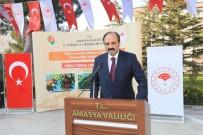 Amasya'da Hedef Kiraz İhracatını Artırmak