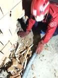 İtfaiye Bodrumda Mahsur Kalan Kediyi Duvar Delerek Kurtardı
