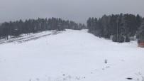 Sarıkamış'ta Kar Yağışı, Her Yer Beyaza Büründü