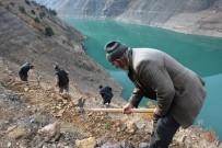 Artvin'de Baraj Havzaları Ağaçlandırılıyor