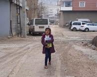 Tableti Olmayan 7 Yaşındaki Öğrenci, Canlı Derslere Katılmak İçin Her Gün 1 Kilometre Yürüyor