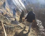 Köylüler, Yaban Keçilerini Korumak İçin Nöbet Tutmaya Başladı