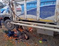 Virajı Alamayan Meyve Yüklü Kamyon Şarampole Uçtu Açıklaması 2 Ölü, 2 Yaralı