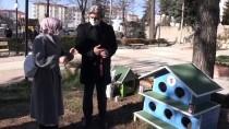 Yozgat Belediyesi Sokak Kediler İçin 20 Barınak Yaptırdı