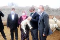 Aksaray'da Küçükbaş Hayvan Sayısı 1,5 Milyona Çıkacak