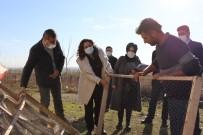 Şanlıurfa'da İpekböcekçiliği Yaygınlaştırma Projesi