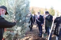 Tunceli'de 'Kahraman Sağlık Çalışanları Hatıra Ormanı' Oluşturuldu