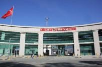 Sarp Sınır Kapısı'ndan Günlük Tır Geçiş Rekoru Kırıldı