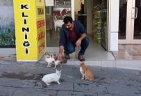 Sokak Hayvanlarının Veterineri