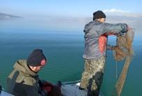 Eğirdir'de Kaçak Avlanılan 200 Kilogram Kerevit Göle İade Edildi