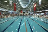 KURBAĞA - Ata Yüzme Şenliğinde Büyük Heyecan Yaşandı