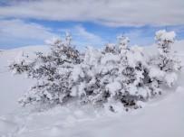 Mazıdağı'nda Etkili Olan Kar Yağışı Ve Tipi Ulaşımda Aksamalara Neden Oldu