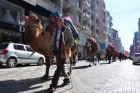 FESTIVAL - Torbalı'da Develer Kortej Yürüyüşünde Boy Gösterdi