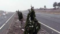 Kastamonu'da Kar Etkili Oluyor