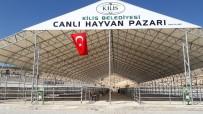RECEP SOYTÜRK - Kilis'te Hayvan Pazarı Korona Virüs Tedbirleri Kapsamında Kapatıldı