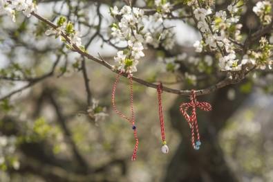 Ağaçlar Marteniçka Açtı