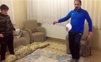 FELIPE MELO - Yeni Malatyaspor'un Emektar İsimleri De Tuvalet Kağıdı Sektirdi