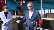 DAVUT GÜL - Gaziantep'teki Suriyeli Doktorlardan Koronavirüs Mücadelesine Destek