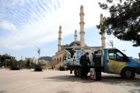 MUSTAFA YAMAN - Büyükşehir Belediyesi Sokak Hayvanlarına Sahip Çıkıyor