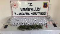 UĞUR MUMCU - Mersin'de Uyuşturucu Operasyonu Açıklaması 5 Gözaltı