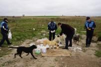 ÇORLU BELEDİYESİ - Sokak Hayvanları Unutulmadı