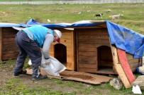 AVCILAR BELEDİYESİ - Avcılar Belediyesi Sokak Hayvanlarını Unutmadı