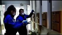 KİMLİK KARTI - İstanbul Polisi, Koronavirüs Fırsatçılarına İlişkin Vatandaşları Bilgilendirdi